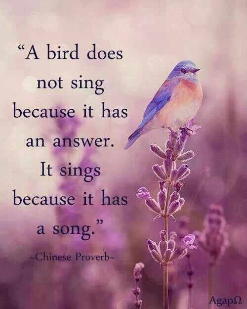 Chinese Quotes: Chinese Quotes And Sayings. QuotesGram
