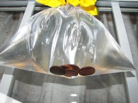 Jak pozbyć się much za pomocą woreczka, wody i kilku monet? Genialne! Kobieceinspiracje.pl