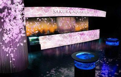 室内でお花見をリアル体験!「桜吹雪」や「こぼれ桜」を堪能できる場所って? | 恋愛jp