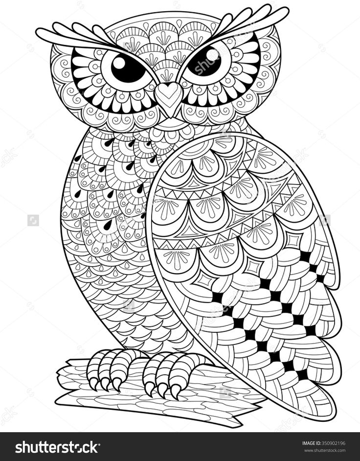 decorative owl adult antistress coloring page black and white hand drawn illustration for coloring