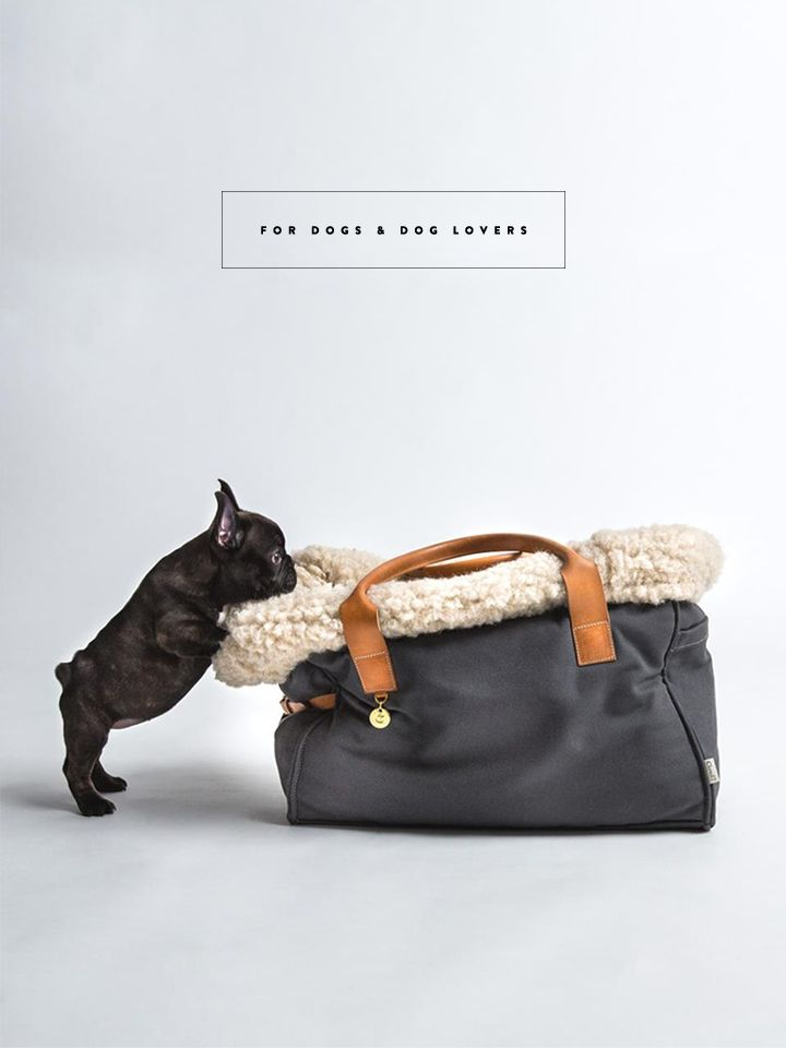 BEAUTIFUL ACCESSORIES FOR DOGS AND DOG LOVERS