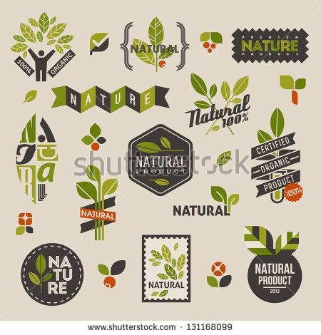 Nature-themed labels and badges with green leaves �¢?? set of vector design elements