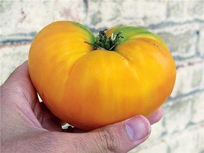 67 Best Heirloom Seeds Images On Pinterest Fruit Garden 400 x 300