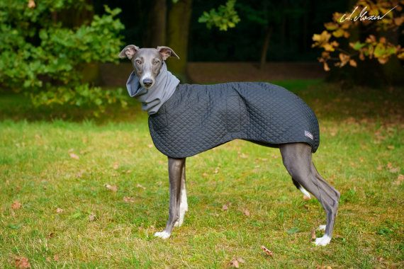 High quality elegant quilted coat for a Whippet, with stylish turtleneck. Its made to order, after we receive the payment and dogs measurements.
