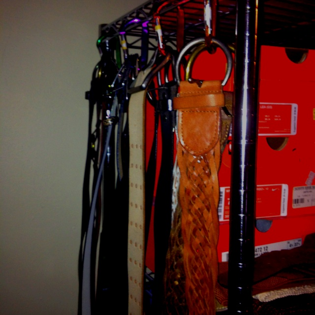 Multi-colored carabiner hooks for my belts. I hang them on the sides of the shelving I bought for part of my massive shoe collection. ;)