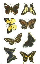 """8 Butterfly Butterflies Flying Insect 1"""" Watrslide Ceramic Decals"""