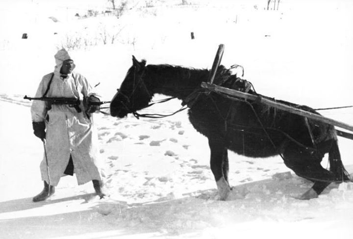 Russia 1941. German soldier and his horse. In two months December 1941 and January 1942 the German Army on the Eastern Front lost 179000 horses.
