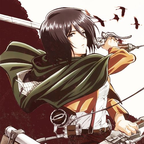 162 Best Images About Mikasa Ackerman ( ^ω^ ) On Pinterest
