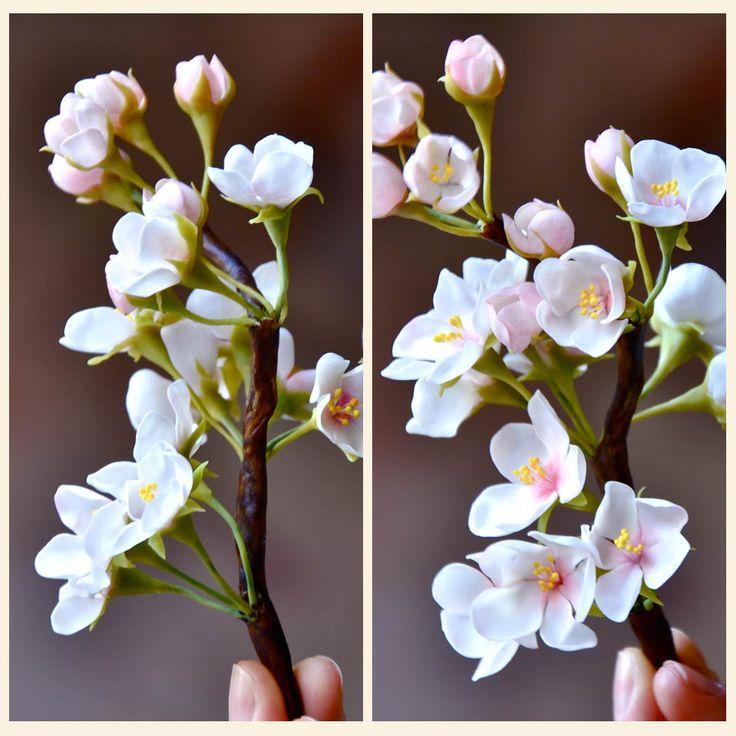 KIREI Tutoriales: Sakura                                                       …                                                                                                                                                     Más