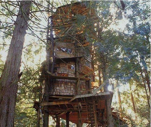 The Scurlock Treehouse in Olympia, Washington