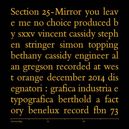 Section 25 - Mirror (RSD 7-inch) [FBN 73]