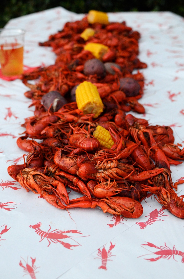 essay on crawfish Category: essays research papers title: fishing my account fishing fishing  making a minnow swim like a crawfish will not catch any fish.