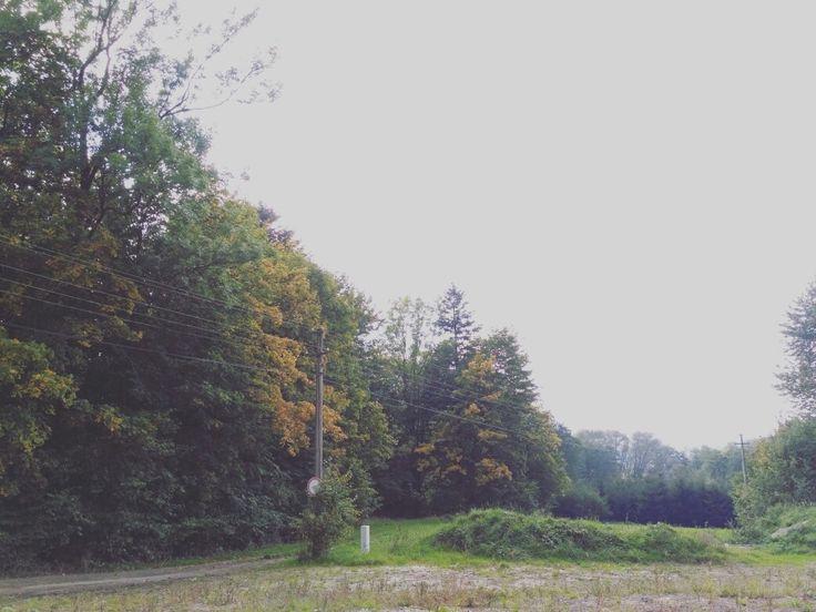 fall mood🍂🍃🍁