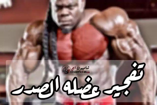 أقوي تمارين لتفجير عضله الصدر وتضخمها بشكل جنوني Strongest Chest Exercises Chest Muscles Muscle Champion