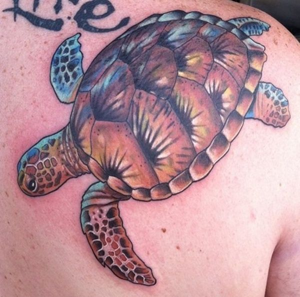 80 Simple and Small Sea Turtle Tattoos Design with ...