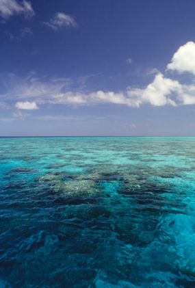 Crystal clean water of Beach of Cairns, Australia,