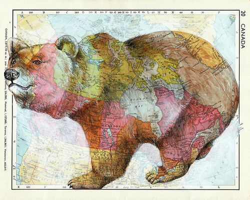 bearPolar Bears, Canada Bears, Art, Mixed Media, Colors Palettes, Big Bears, Brown Bears, Drawing On Maps, Animal