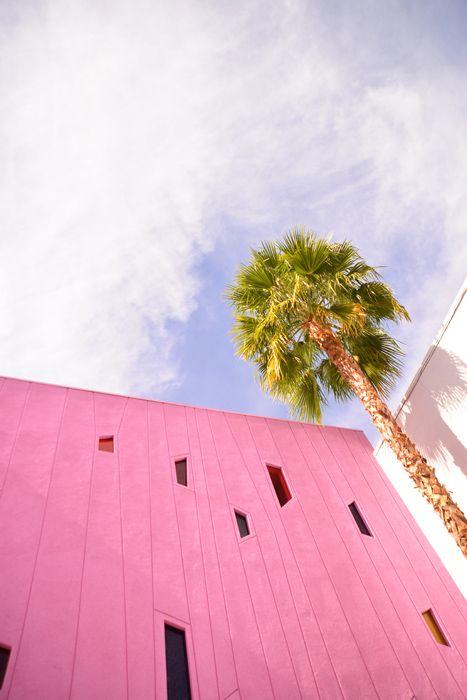 Saguaro, Palm Springs, California  #pink #rosemarin #inspiration #destinations #palmsprings #california