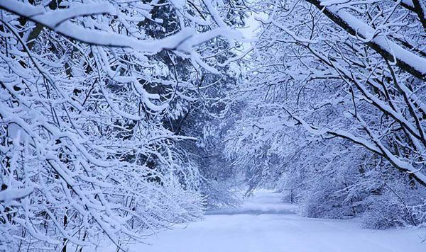А за окном-снег.Скоро зима. - Город.томск.ру