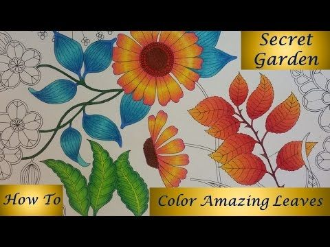 Download Davlina Art Chanel Videos Secret Garden Coloring BookColored Pencil TutorialColoring Book PagesColored