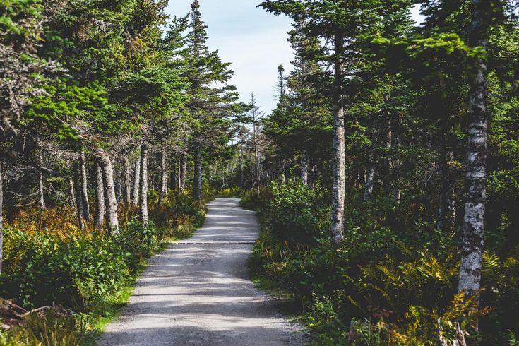 25 incredible hiking trails in Nova Scotia via Explore Magazine