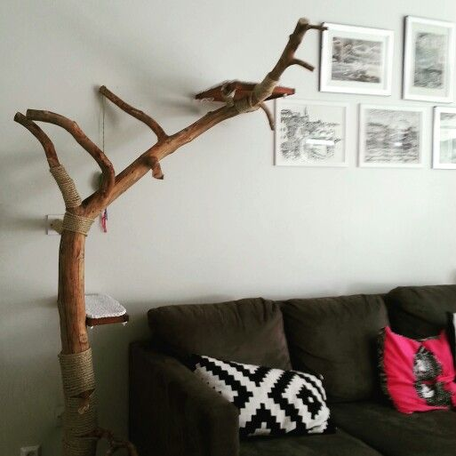 tree for our cats #cats#diy