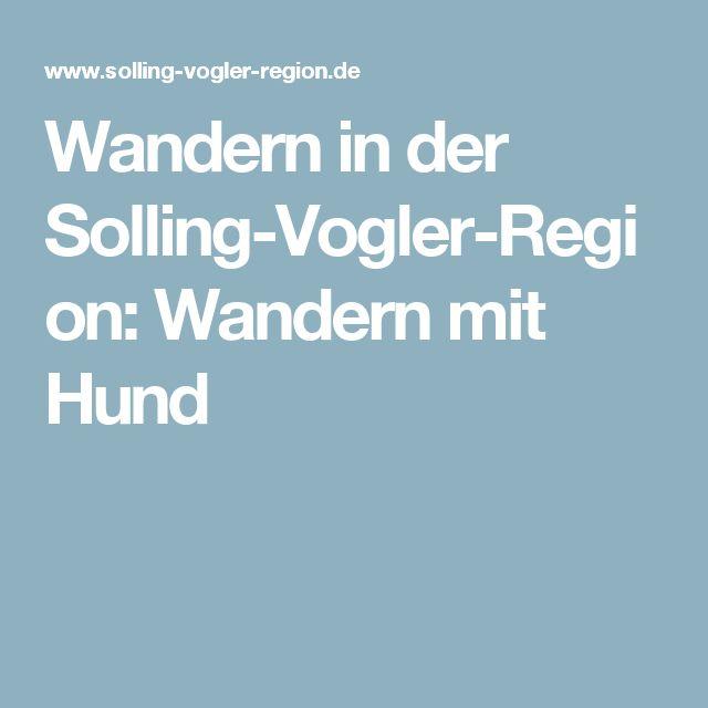 Wandern in der Solling-Vogler-Region: Wandern mit Hund