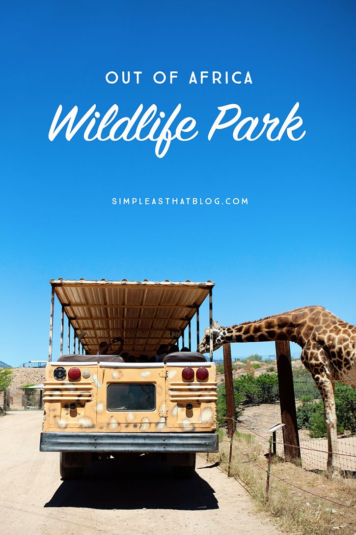 Take a walk on the wild side and get up close and personal with giraffes, tigers and more at Out of Africa Wildlife Park near beautiful Sedona, AZ.
