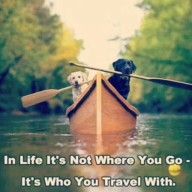Life is not where you go but who you travel with!