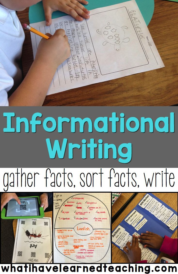 Find out how we do informational and expository writing in second graders. It's all about animals. We gather our facts, work with our facts, and then do our writing. Students (and teachers) love this process. Informational Writing | Informative Writing