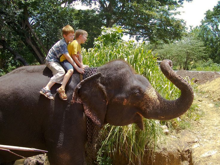 Top activities for an exciting family #holiday in #Seminyak. #villagetaways #thingstodo