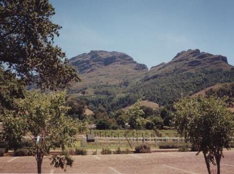 Stellenbosch, South Africa  (the wine region outside of Capetown)
