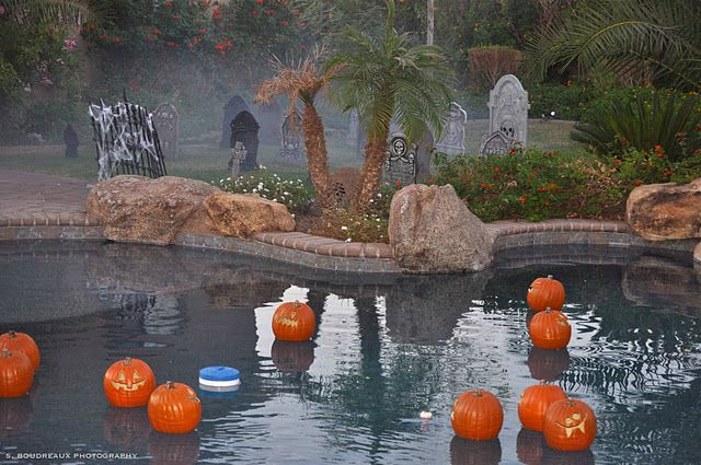 Best 25 floating pool decorations ideas on pinterest - Halloween swimming pool decorations ...