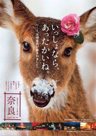 奈良・観光協会が制作した鹿のポスターが「かわいい」と人気に
