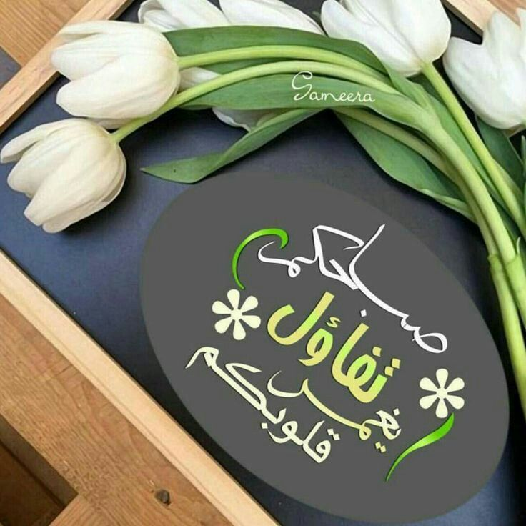 Good Morning صباح الخير Good Morning Greetings Good Morning Images Morning Images