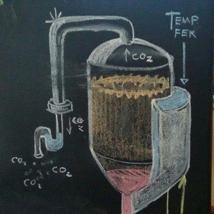 Processo de fermentação da cerveja artesanal