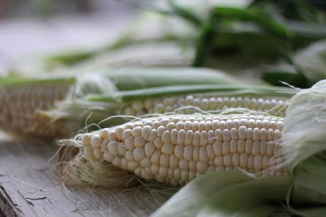 Cooler Corn for 350 How to cook corn for a crowd in a cooler!  Easiest method, ever.