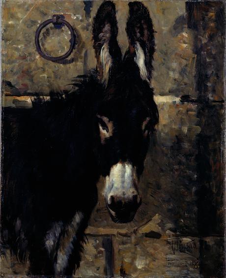 Henrique Pousão, Cabeça de Burro