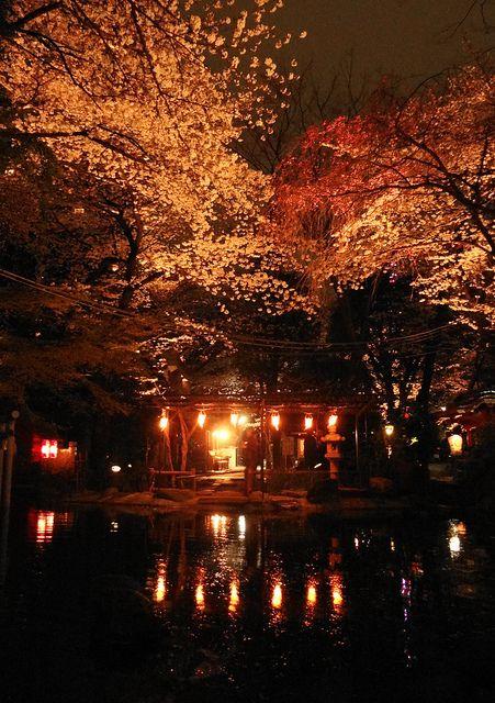 Cherry Blossoms 2013 - Atago Shrine in Tokyo by FantaXystA, via Flickr