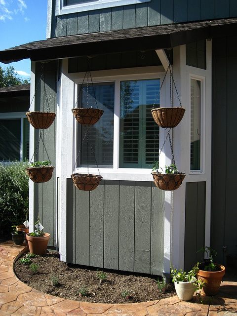 My hanging baskets with vegetables and herb garden: Diy Gardens, Gardens Ideas, Baskets Vegetables, Baskets Gardens, Vegetables Gardens, Herbs Gardens, Gardens Plans, Great Ideas, Gardens Growing