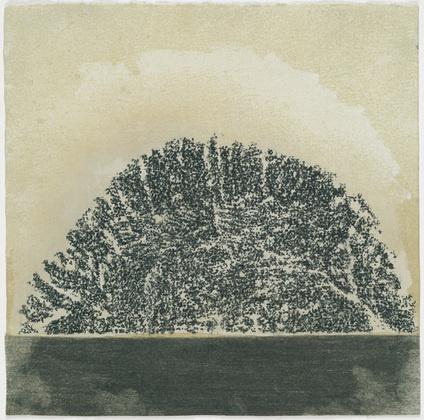 Guiseppe Penone - Untitled (No.1) -1981