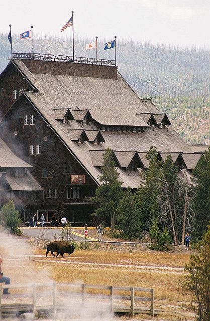 Old Faithful Inn, Yellowstone NP, Wyoming - finding it hard to believe that I stayed here 20 years ago.