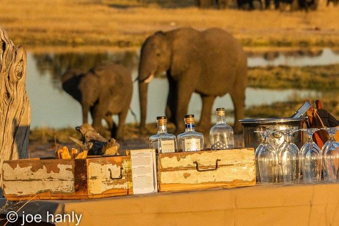 What a great ending to your day at Linkwasha Camp, Hwange