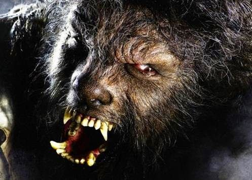 "ARGENTINA - Legend of ""Werewolf"", Kirchner adopts young Jew"