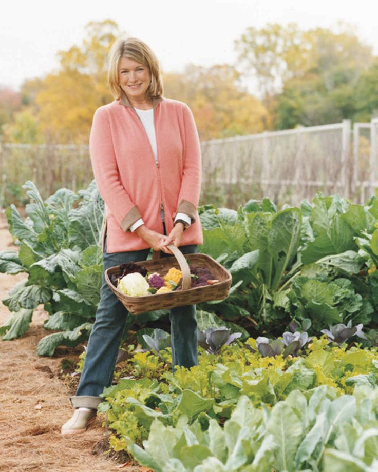 A passionate and accomplished gardener, Martha shares her tried-and-true tips for a successful vegetable garden, from seed starting to spacing plants.