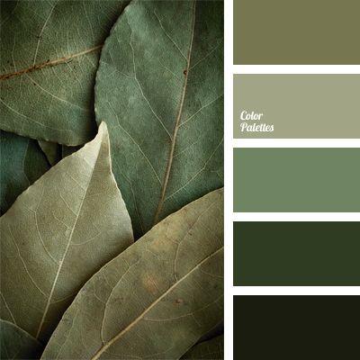 kalte grüne Abstufungen, Farbe der Lorbeerblätte…