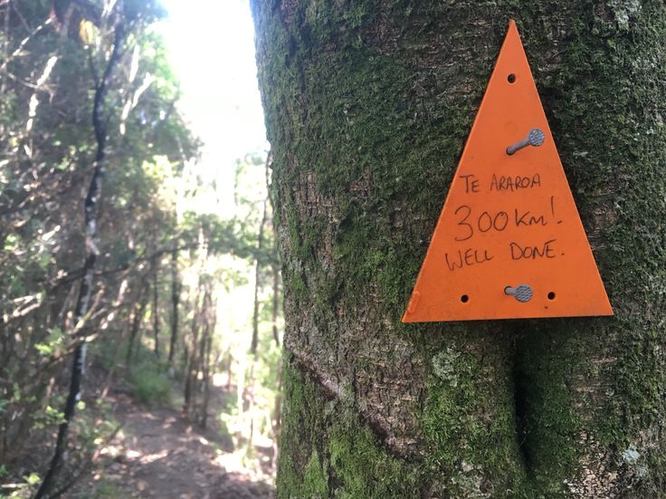 300kms on the Te Araroa Trail done and dusted