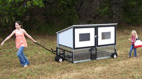 """The chicken tractor is an ingenious invention and a classic example of the Permaculture concept of """"stacking functions."""" Permaculture is an ecological design philosophy that has been applied to far..."""
