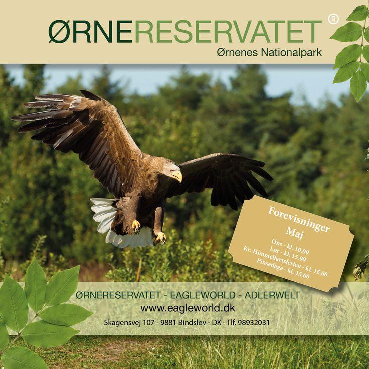 EagleWorld - Ørnereservatet ved Skagen