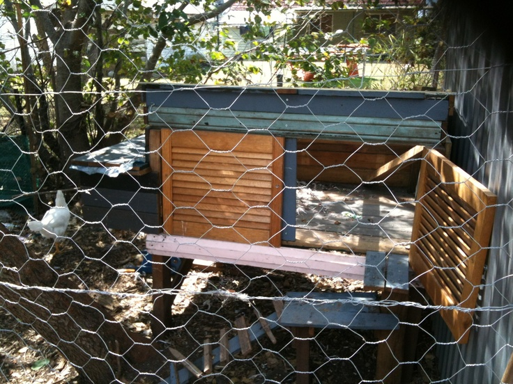 Chicken Coop- Biggest thing I've made..  The Roof lifts up for easy cleaning, also had four laying compartments with easy access so kids can collect the eggs..  I love it! And our Eggs are Delicious!  Aug 2012